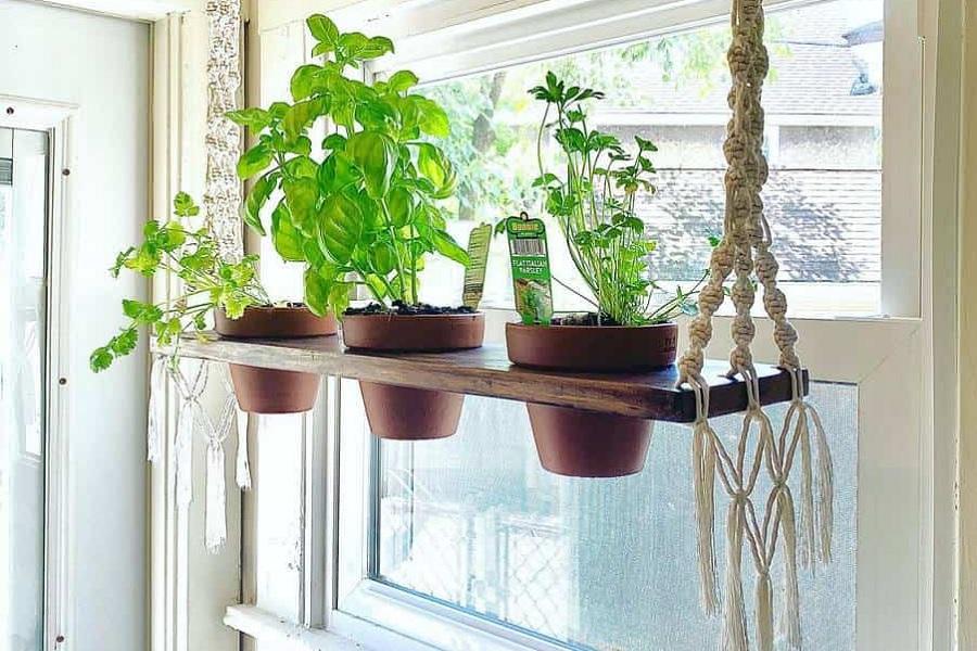 The Top 76 Indoor Herb Garden Ideas