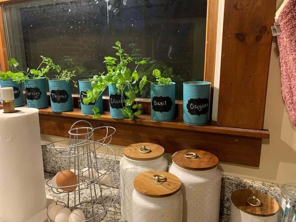 easy-indoor-herb-garden-ideas-chelsea-ambre_-8254320