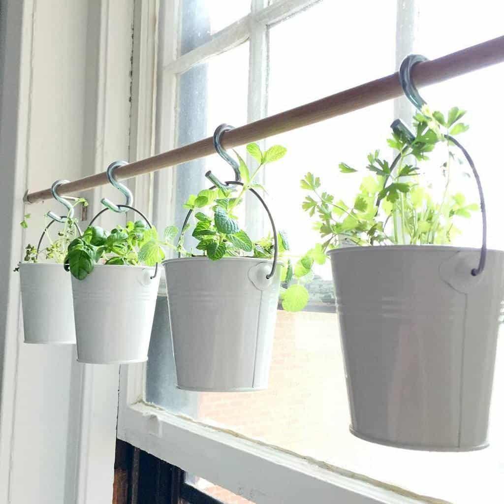 hanging-indoor-herb-garden-ideas-cruzship302-4077132