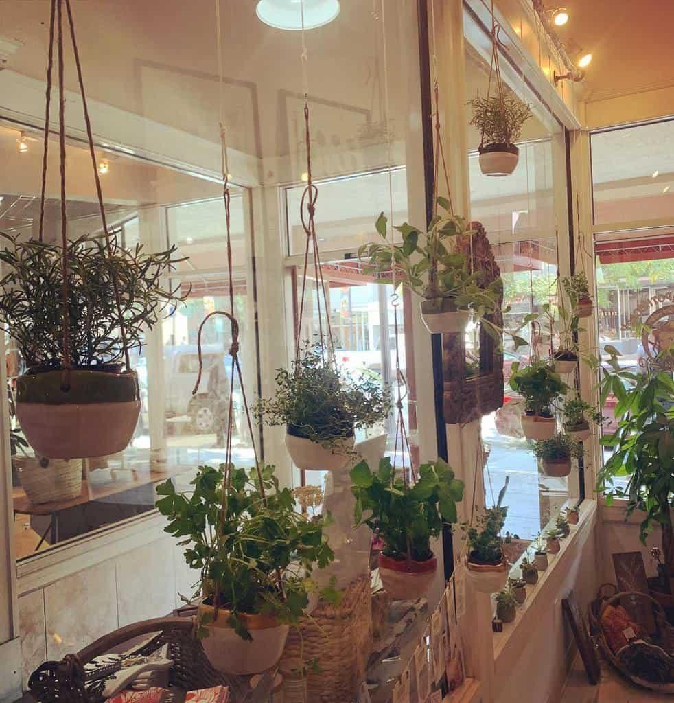 hanging-indoor-herb-garden-ideas-floraluna_apothecary-5330567