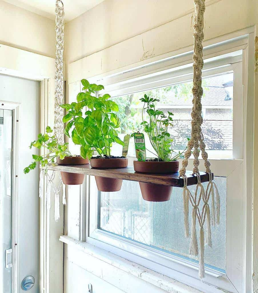 hanging-indoor-herb-garden-ideas-lemontwiststudio-3570946