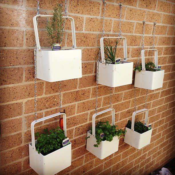 hanging-indoor-herb-garden-ideas-sand-and_-sea_-2377625