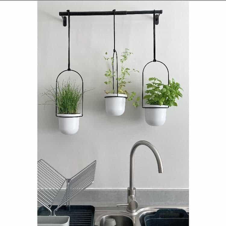 kitchen-indoor-herb-garden-ideas-colouringinmynewbuild-7947004