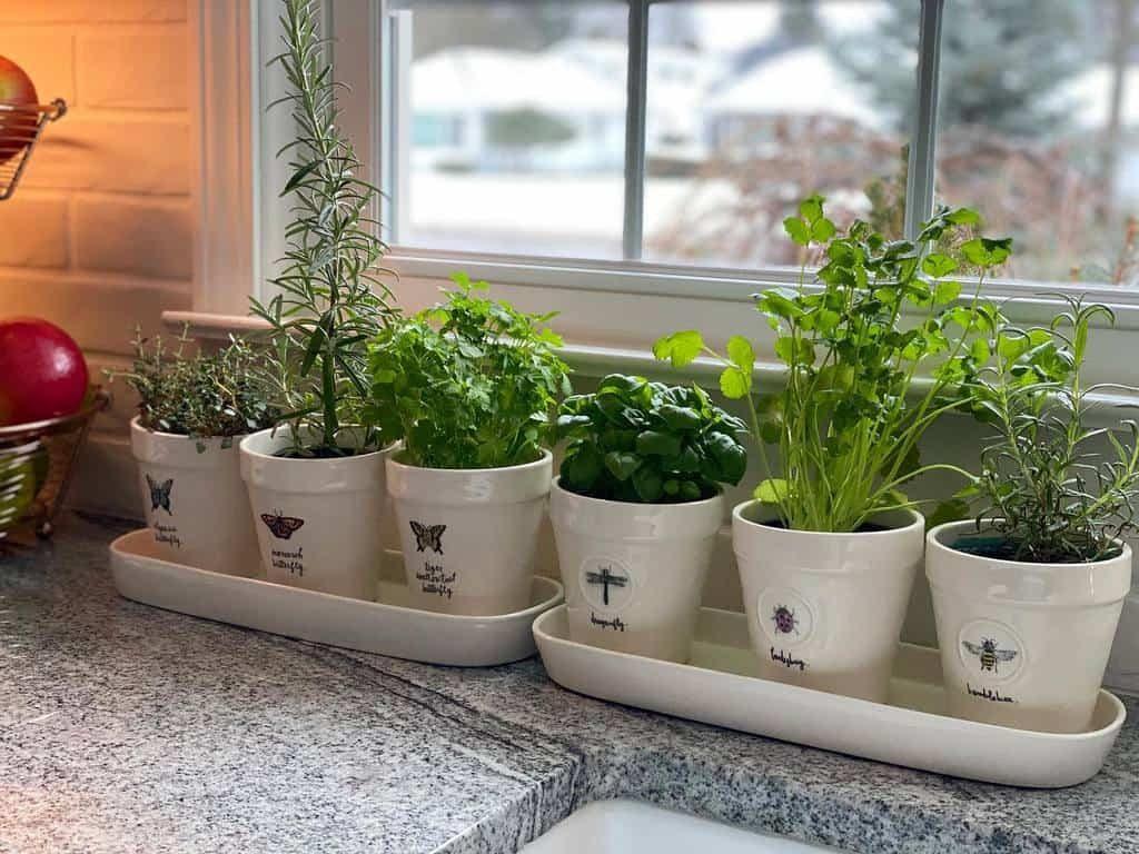 kitchen-indoor-herb-garden-ideas-dreamygarden2000-9453571