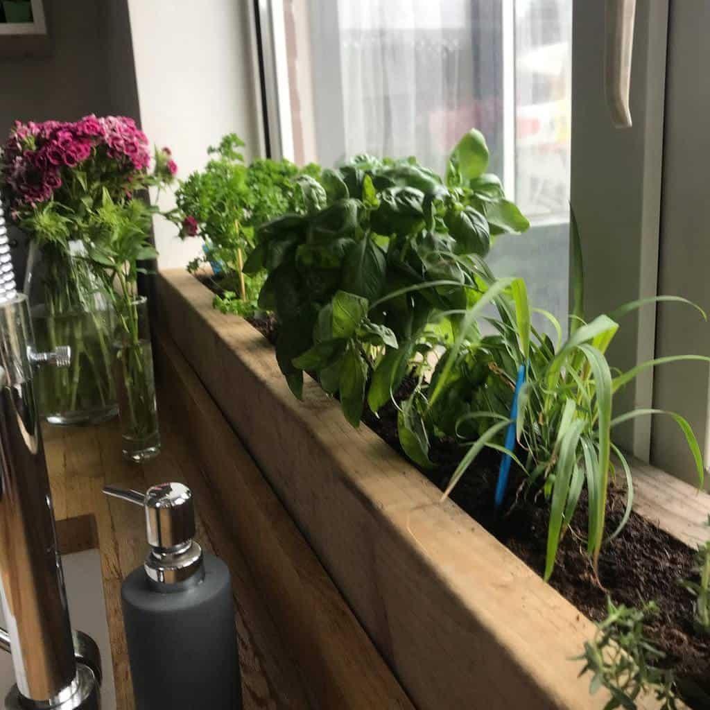 kitchen-indoor-herb-garden-ideas-thedakins_at_51-9426404