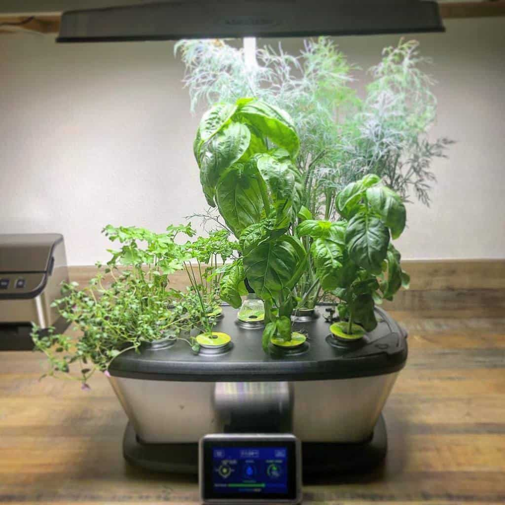 modern-indoor-herb-garden-ideas-keeks-wanderer-4420842