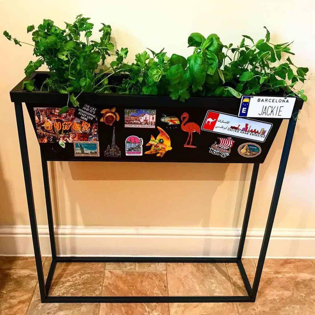 planter-ideas-indoor-herb-garden-ideas-jax_home_cooking-7440136