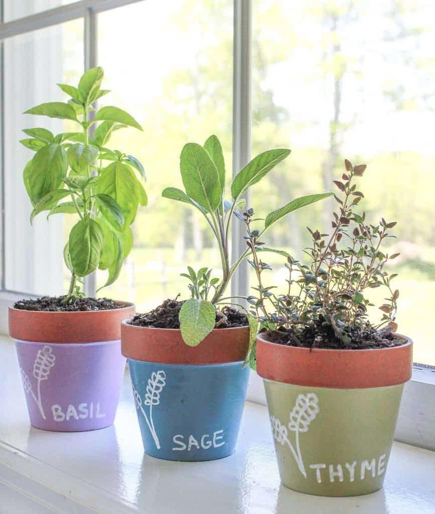 planter-ideas-indoor-herb-garden-ideas-peace_garden_farm-7415491