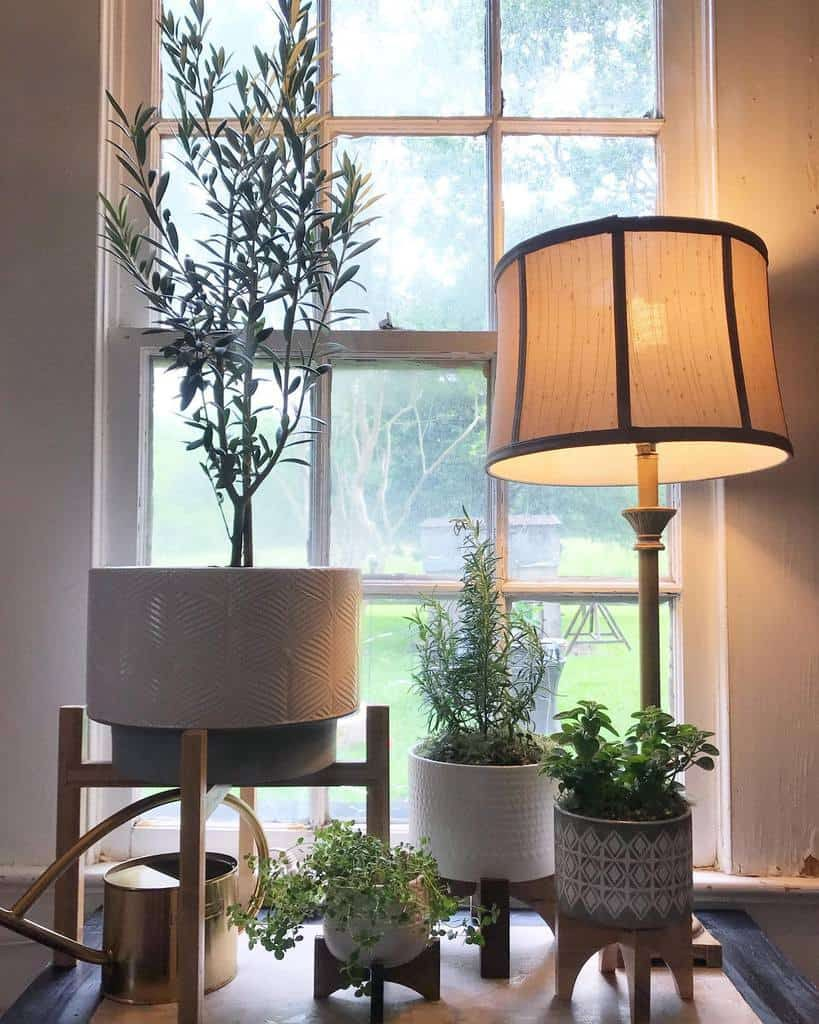 potted-indoor-herb-garden-ideas-leahs_renewell-6818332