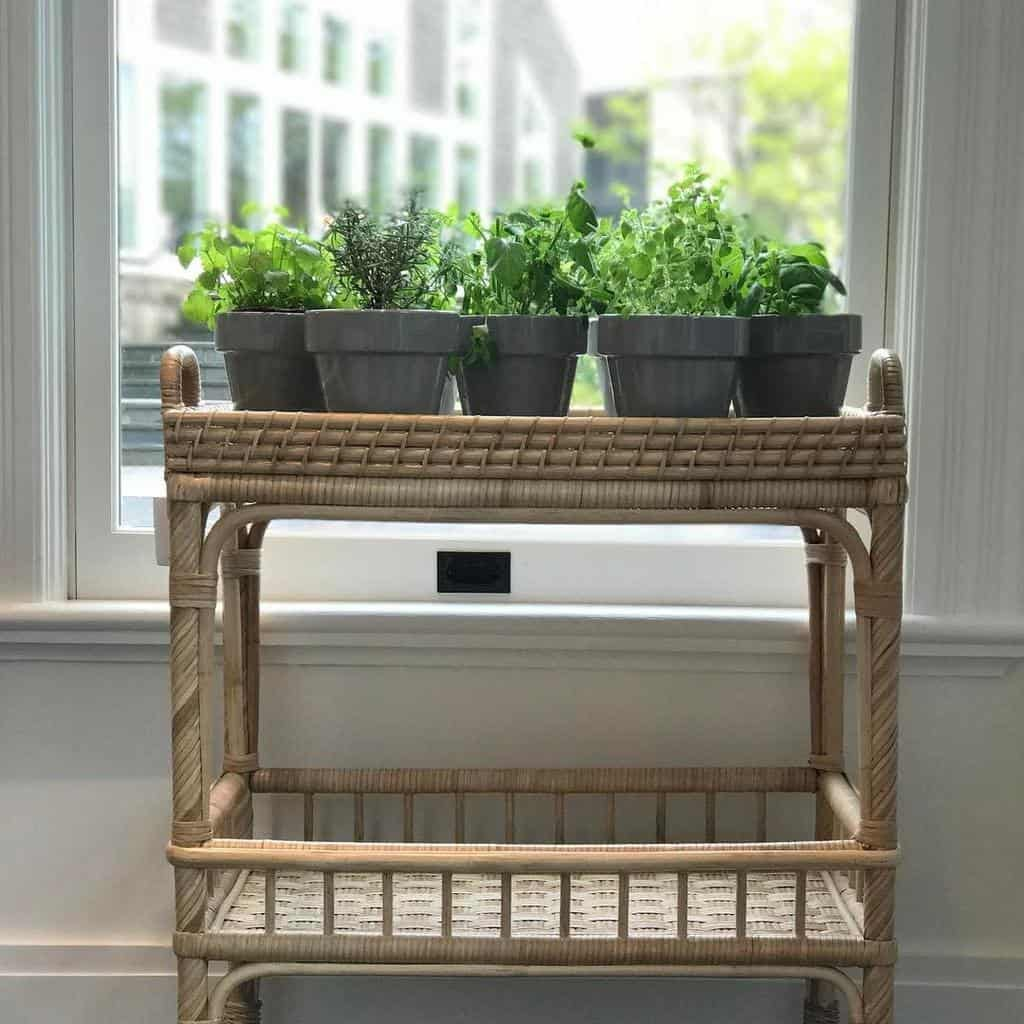potted-indoor-herb-garden-ideas-most_lovely_things-6595627