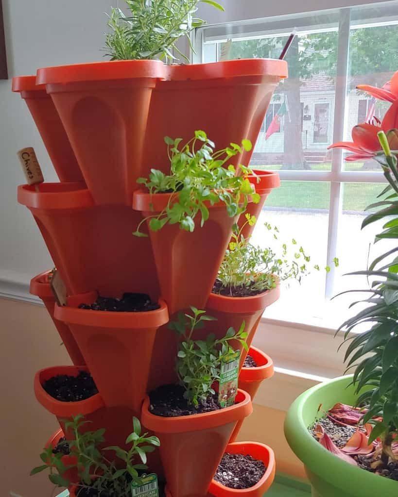 vertical-indoor-herb-garden-ideas-_joykyla_-4941639