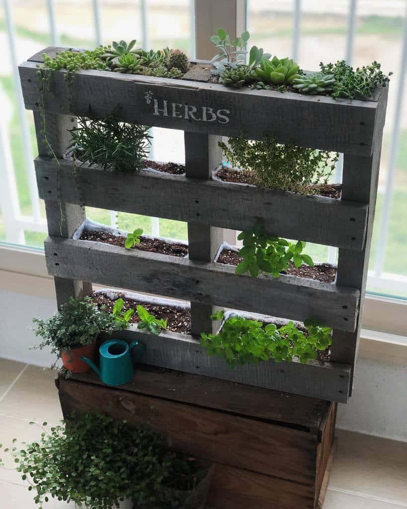 vertical-indoor-herb-garden-ideas-doughmisol-5143248