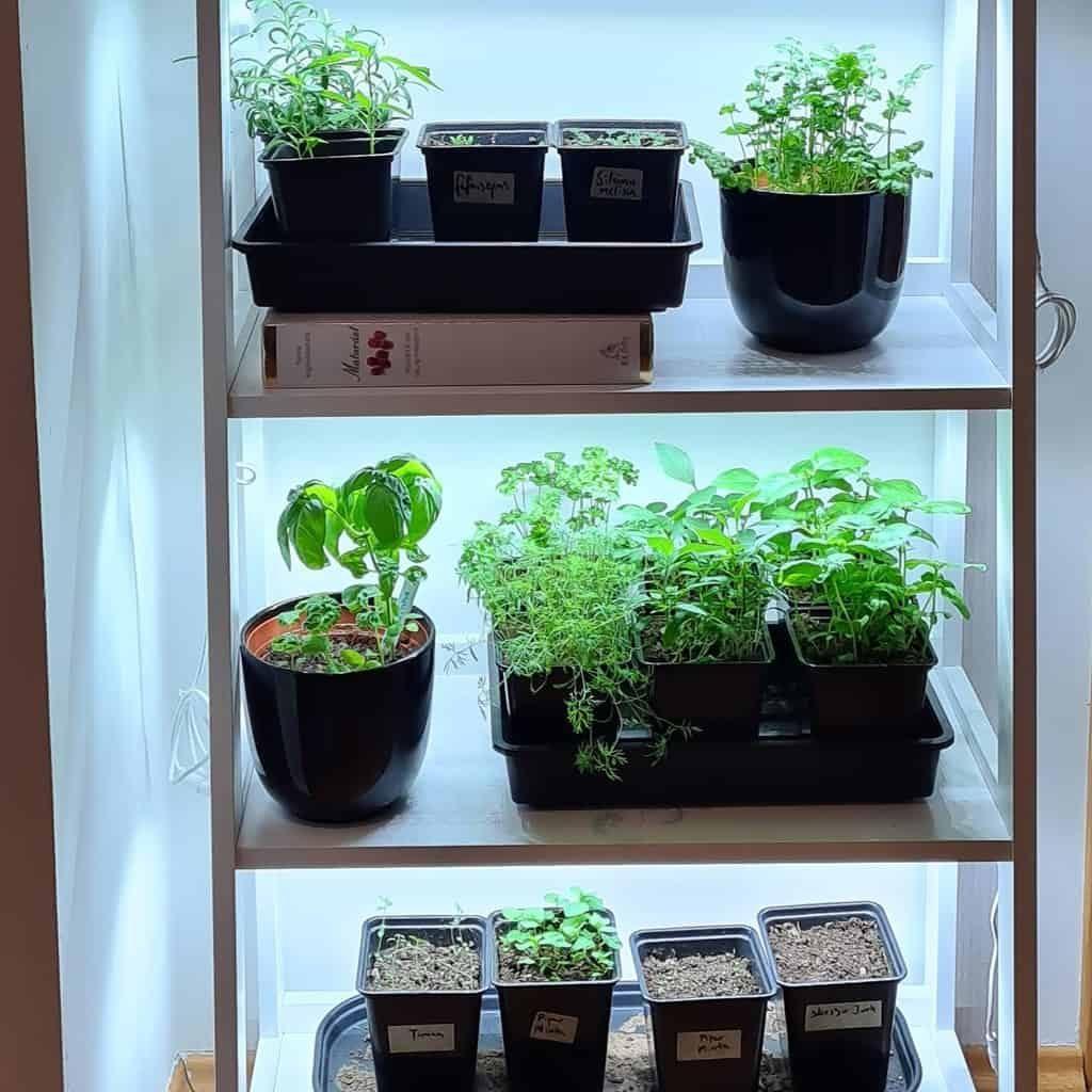 vertical-indoor-herb-garden-ideas-indoor_and_outdoor_garden-5112039