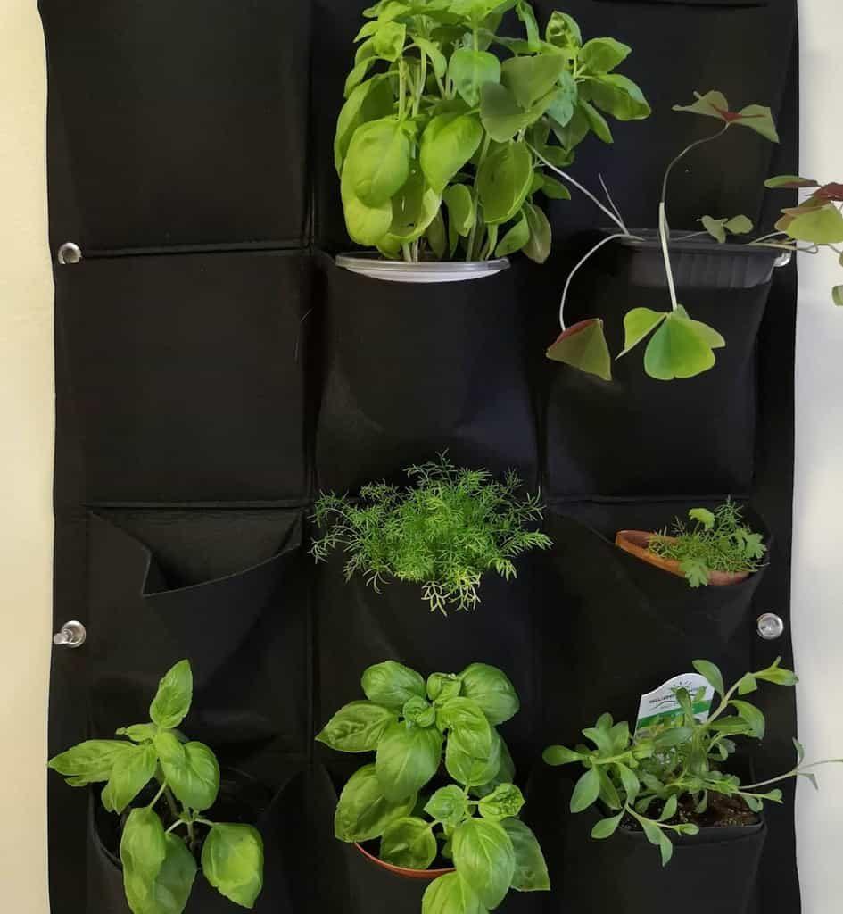 vertical-indoor-herb-garden-ideas-lovingthechase_-6299044