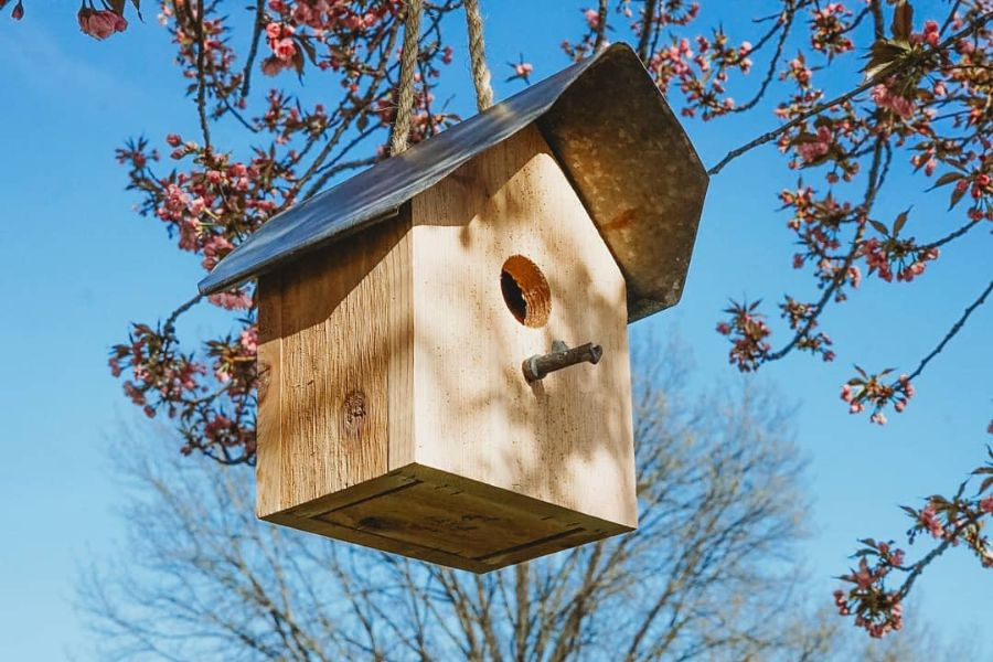 The Top 45 Birdhouse Ideas