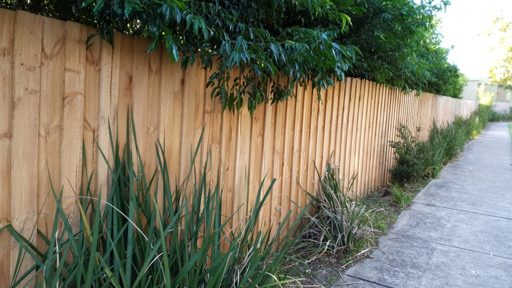 Fence Outdoor Privacy Screen Ideas