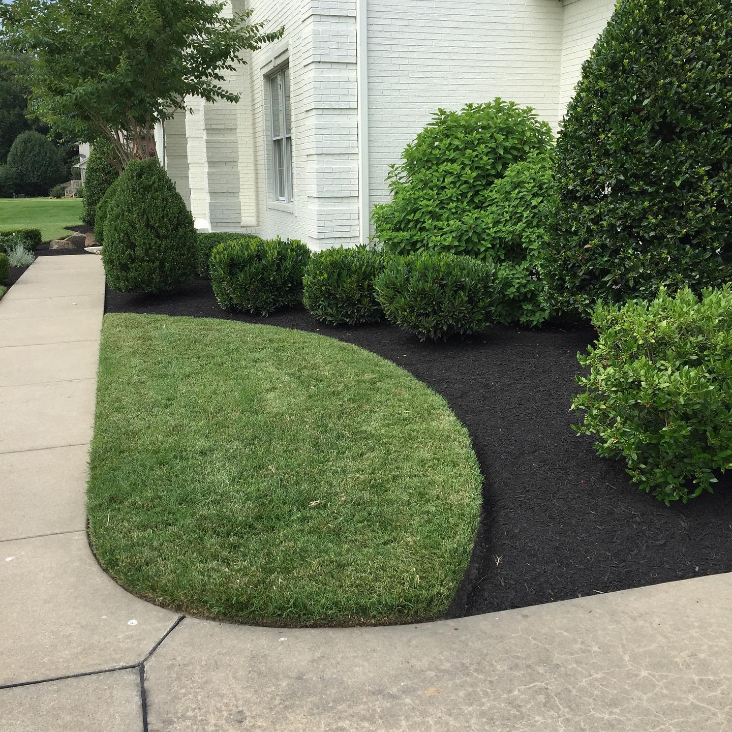 Lawn Simple Landscaping Ideas -bryanwomackyahoocom