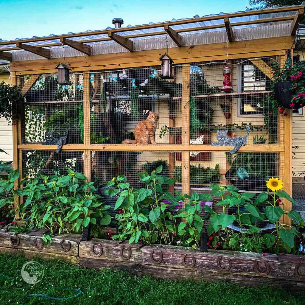 Backyard Catio Ideas -catio_living