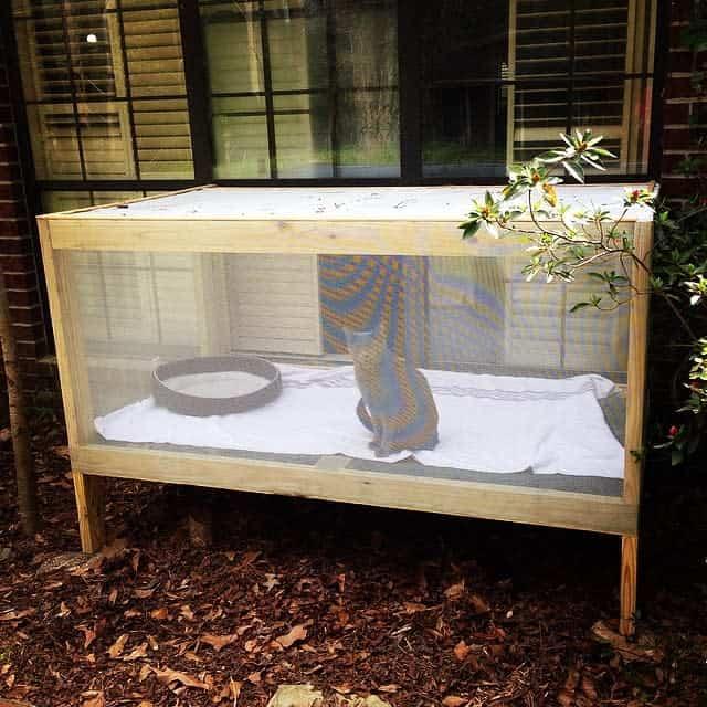 Backyard Catio Ideas -sarah.jayne.murphy
