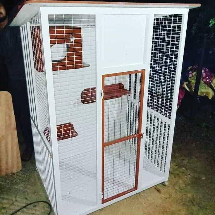 Cage Catio Ideas -catcage2020