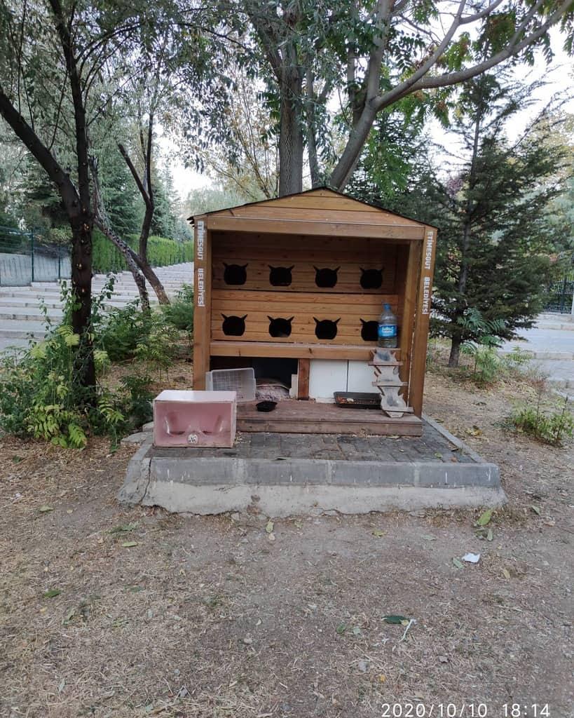 Cat House Catio Ideas -beautifulworld_world_