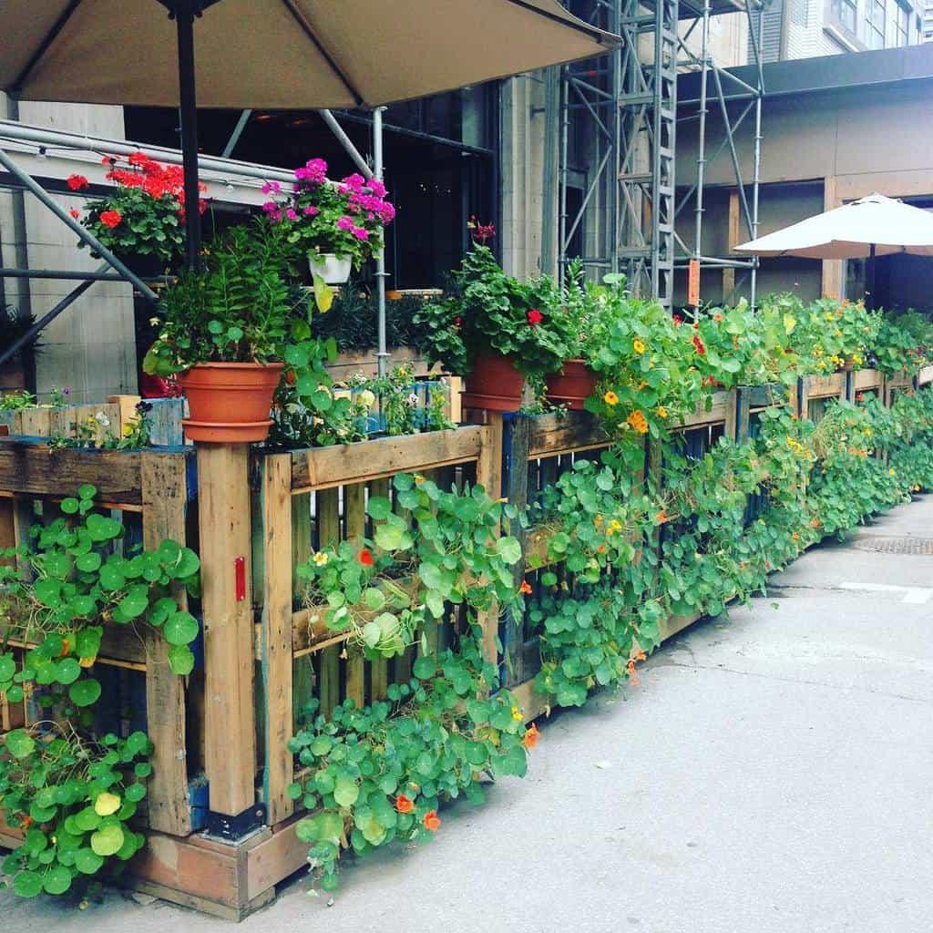 Garden Pallet Fence Ideas -vitalonga