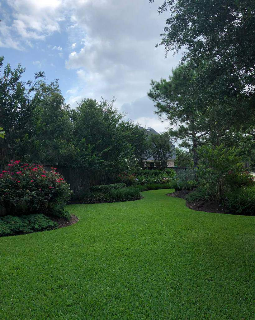Landscape Side Yard Ideas -note2karen