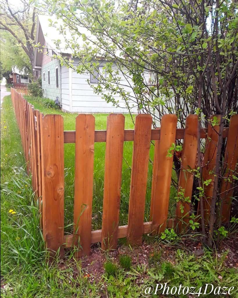 Picket Pallet Fence Ideas -photoz4daze