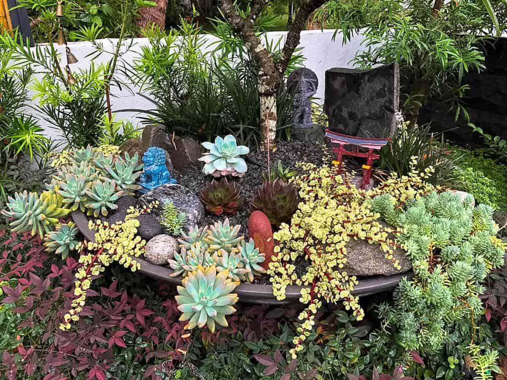Backyard Xeriscape Ideas -livinglandscapesnoosa