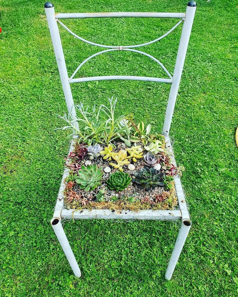 Creative Succulent Garden Ideas -pinayplantita_25