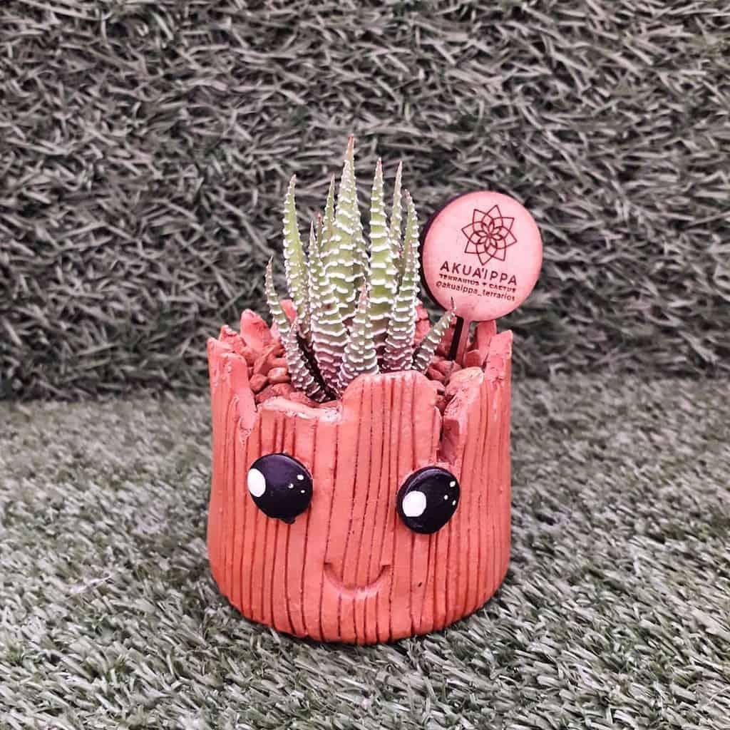 Cute Pots for Succulents Garden Ideas -akuaippa_terrarios