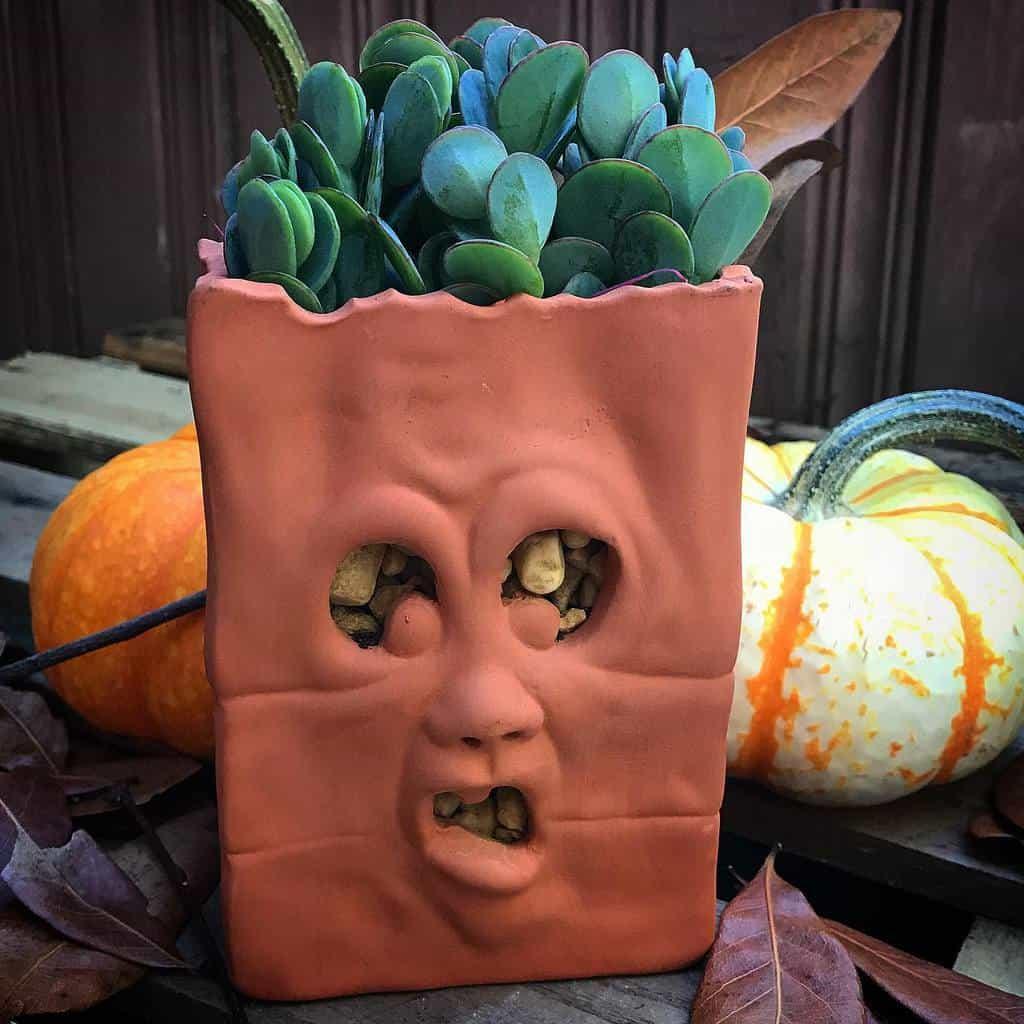 Cute Pots for Succulents Garden Ideas -terracottacorner