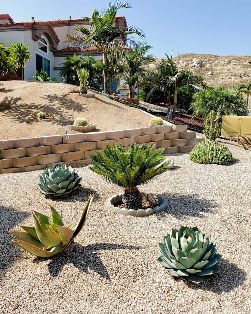 Design Xeriscape Ideas -succulent_cacti_lady