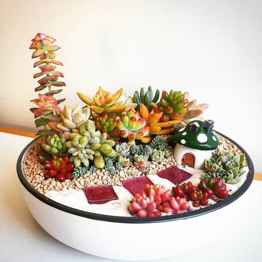 Dish Garden Succulent Garden Ideas -sowcoolents