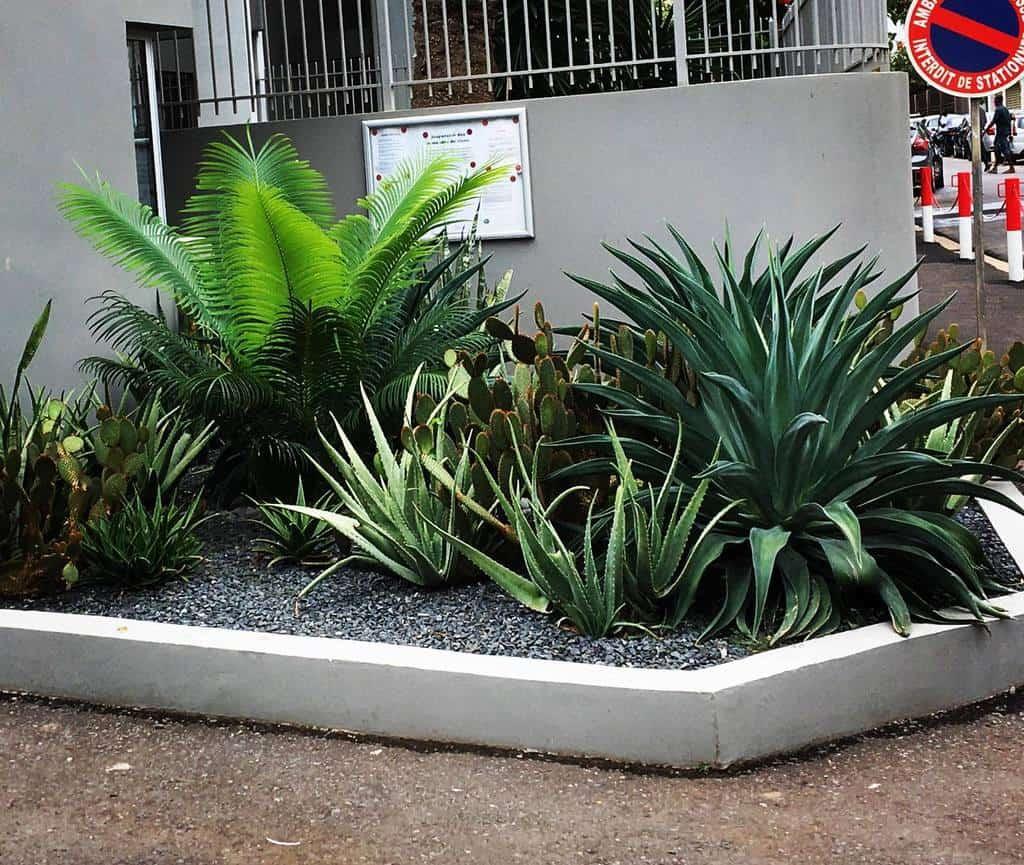 Garden Xeriscape Ideas -green_creations