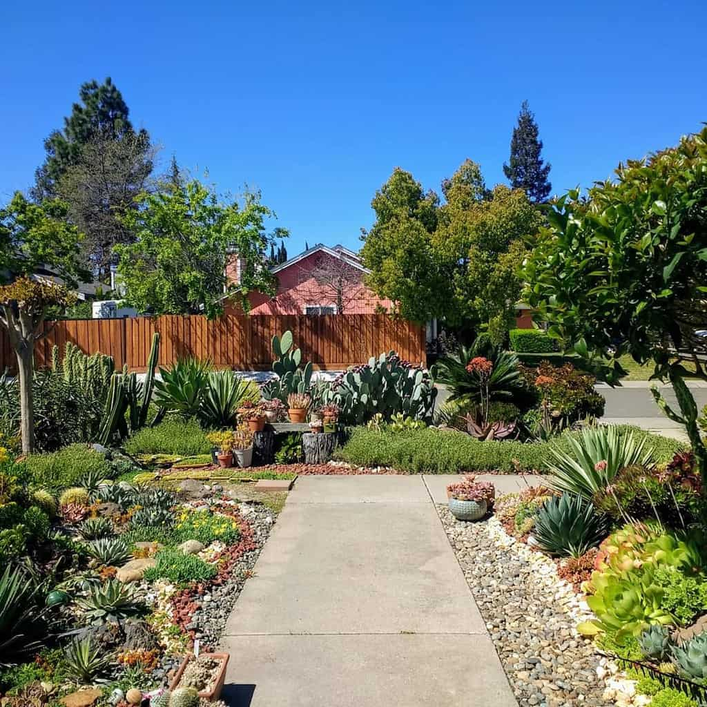 Landscape Succulent Garden Ideas -eliad_67