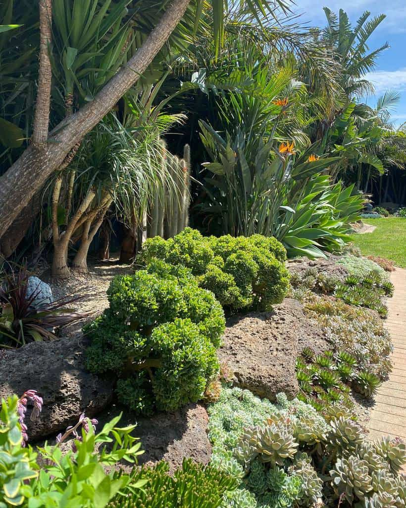 Landscape Succulent Garden Ideas -josies_succulents