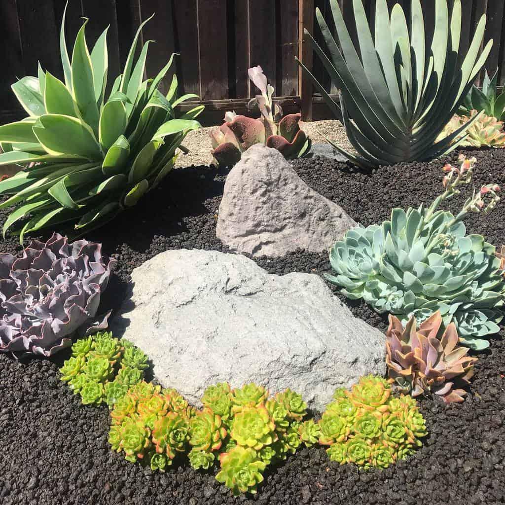 Landscape Succulent Garden Ideas -secretgardendesigns18