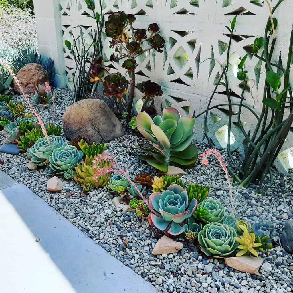 Landscape Succulent Garden Ideas -succulentdesignsbyjoanna