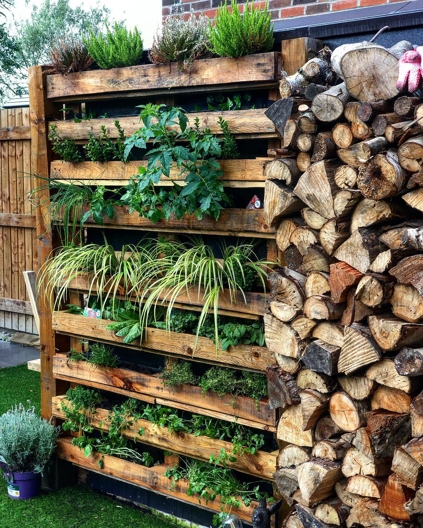 Garden Pallet Wall Ideas -plants_and_wine_