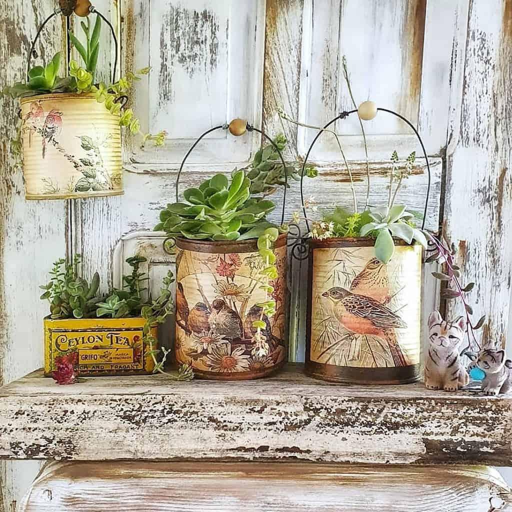 Potted Succulents Garden Ideas -delatasysuculentas