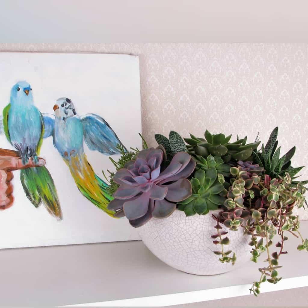 Succulent Garden Arrangement Ideas -katerina_flores