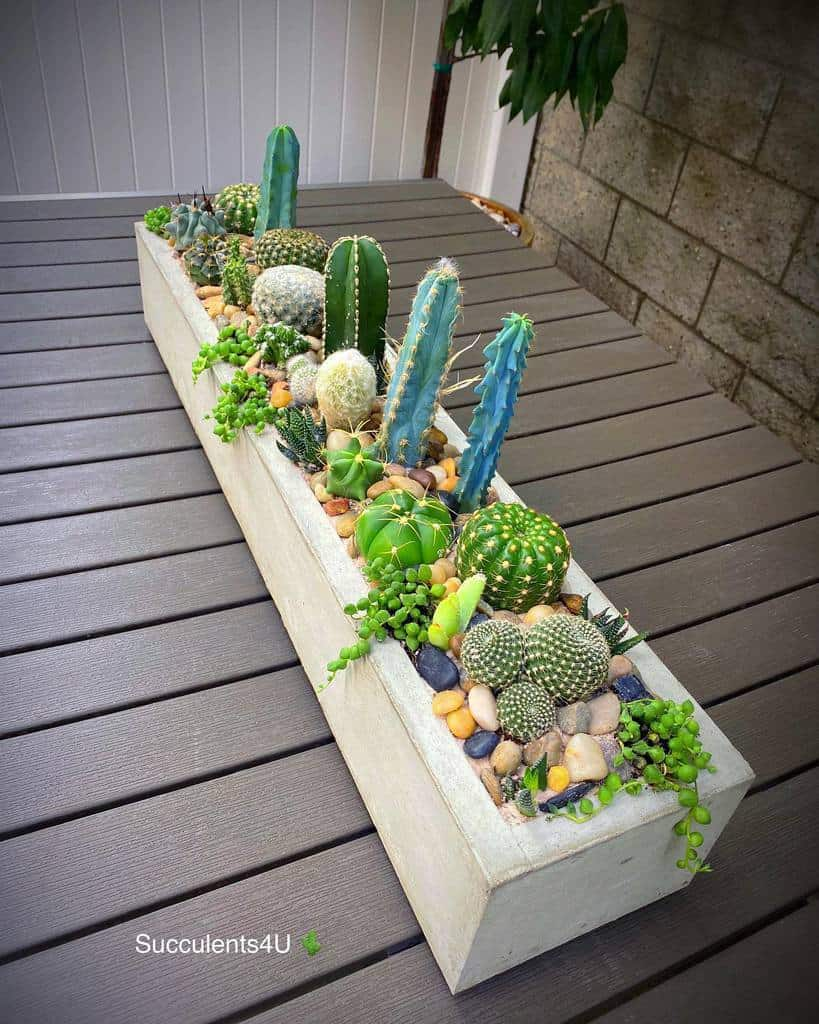 Succulent Garden Arrangement Ideas -succu.lents4u