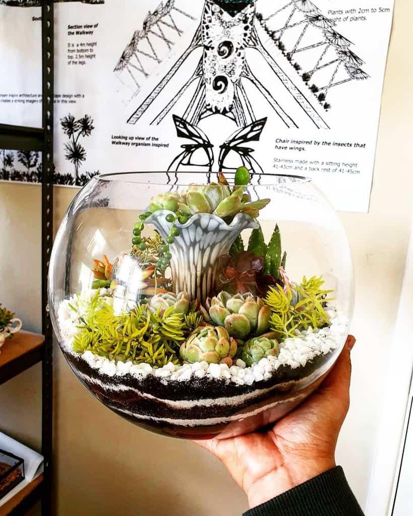 Terrarium Succulent Garden Ideas -sowcoolents