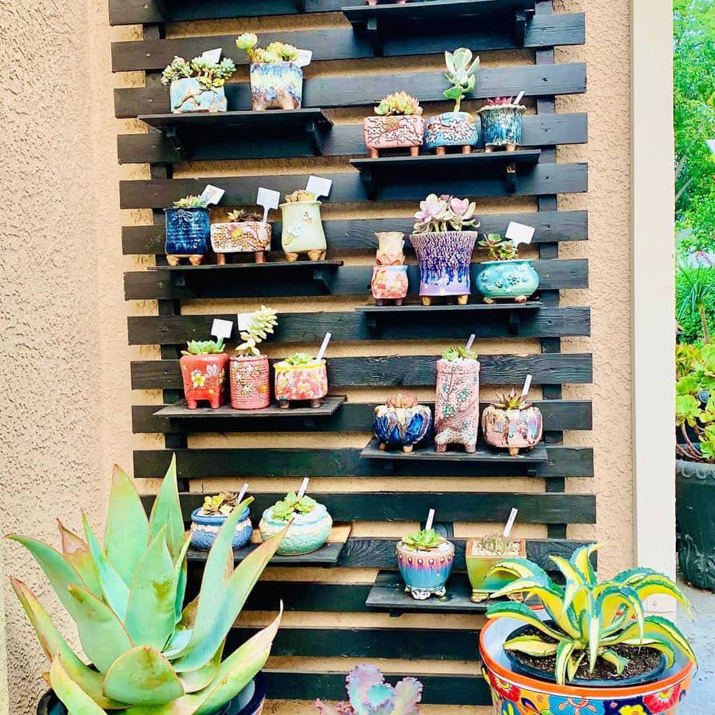 Vertical Succulent Garden Ideas -lizasuccieandplants