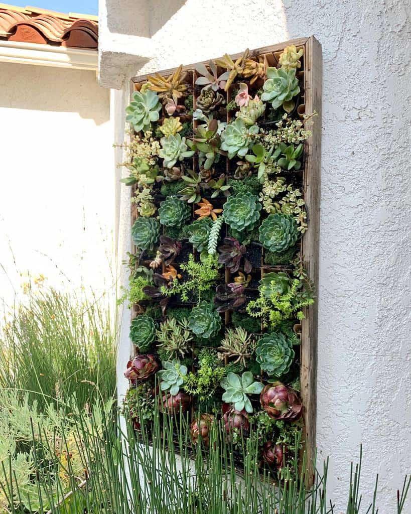 Wall Succulent Garden Ideas -jennhurless