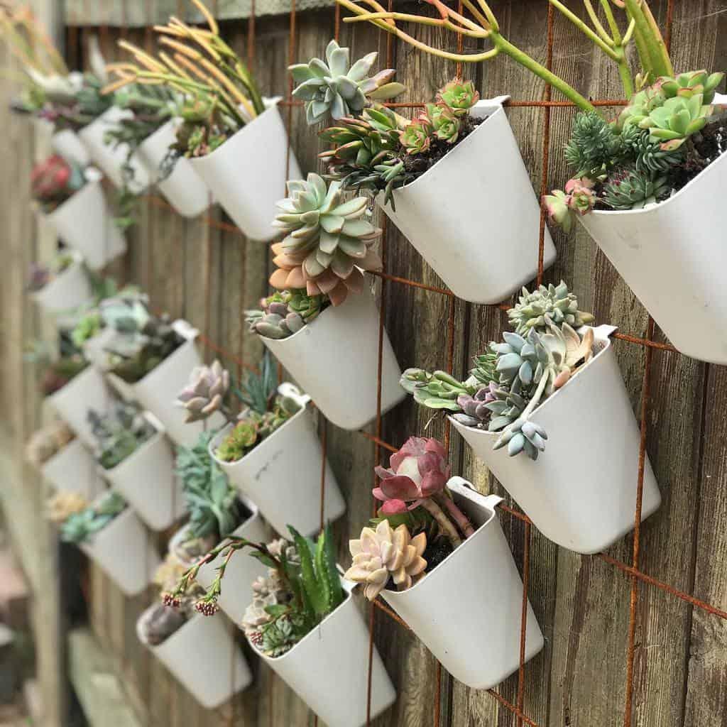 Wall Succulent Garden Ideas -littlesucculentshop_