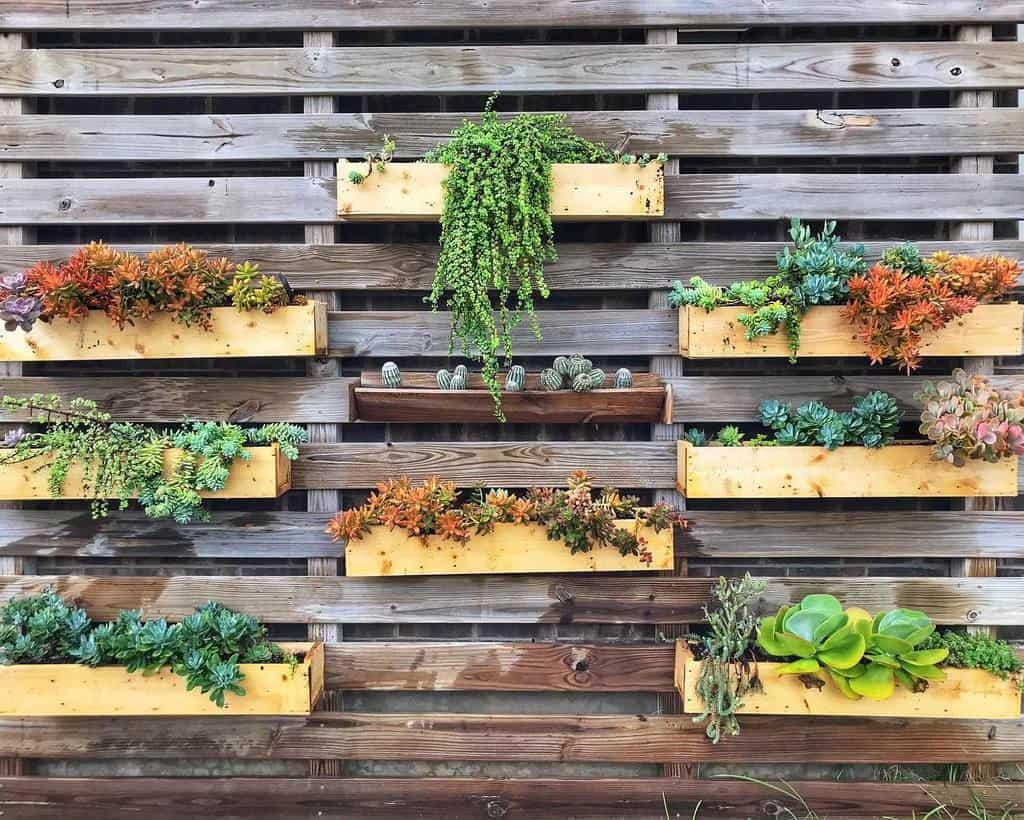 Wall Succulent Garden Ideas -too_legit_to_whit_