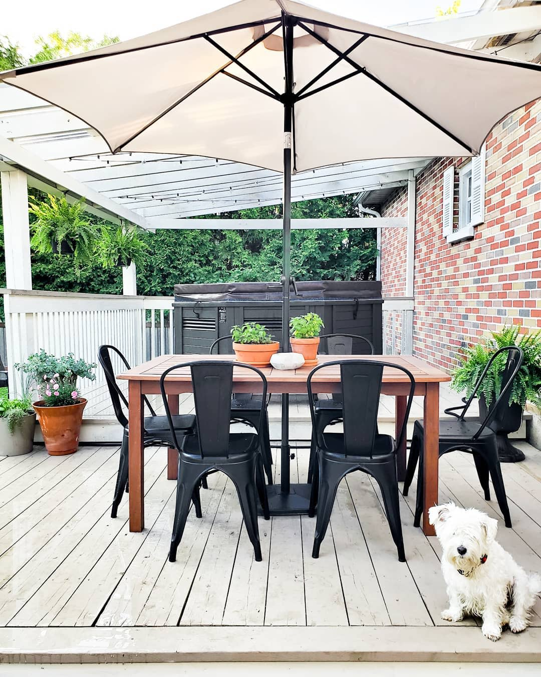Dining Backyard Ideas on a Budget -caitlin.ritchie