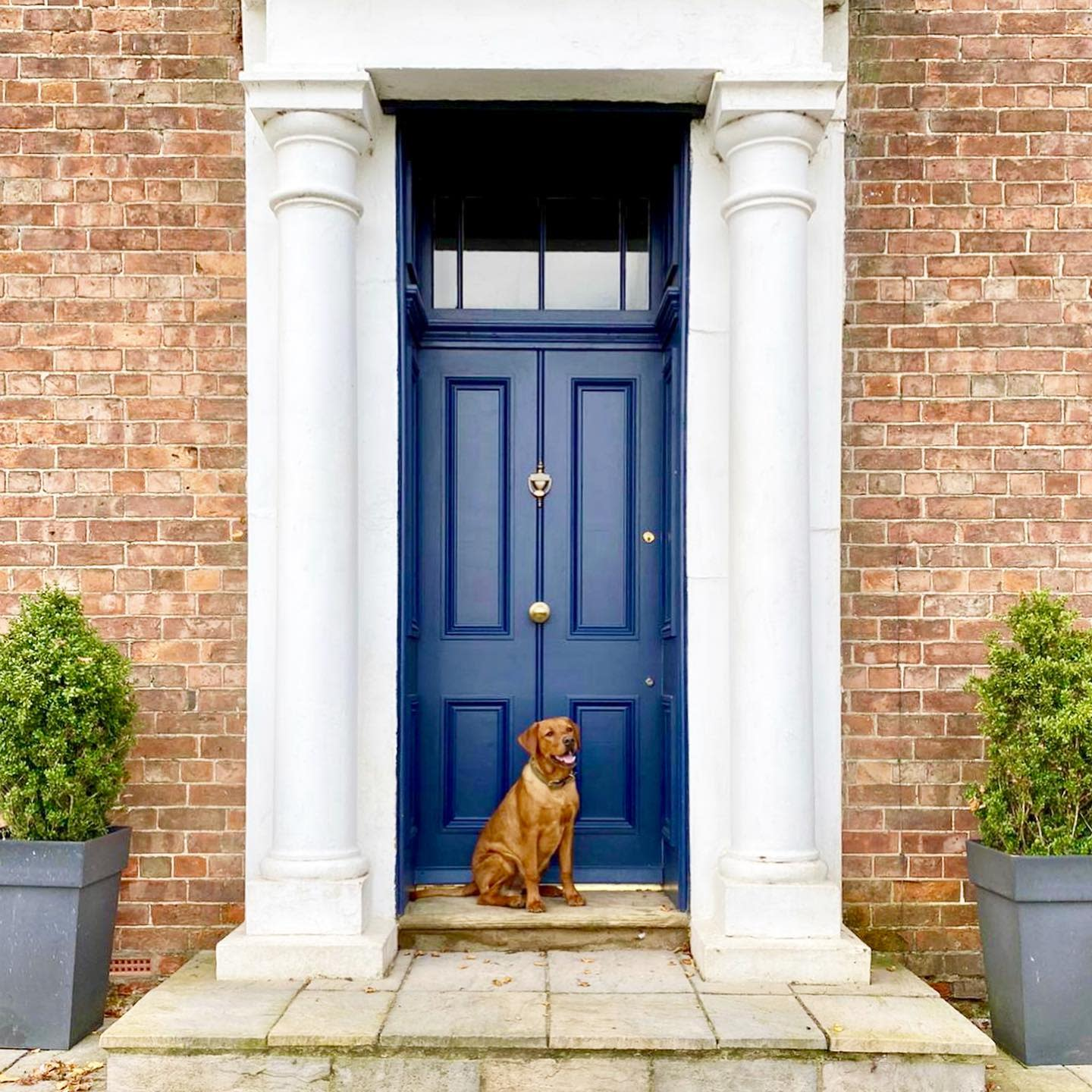 Bright Front Door Color Ideas -ourbigstupidhouse
